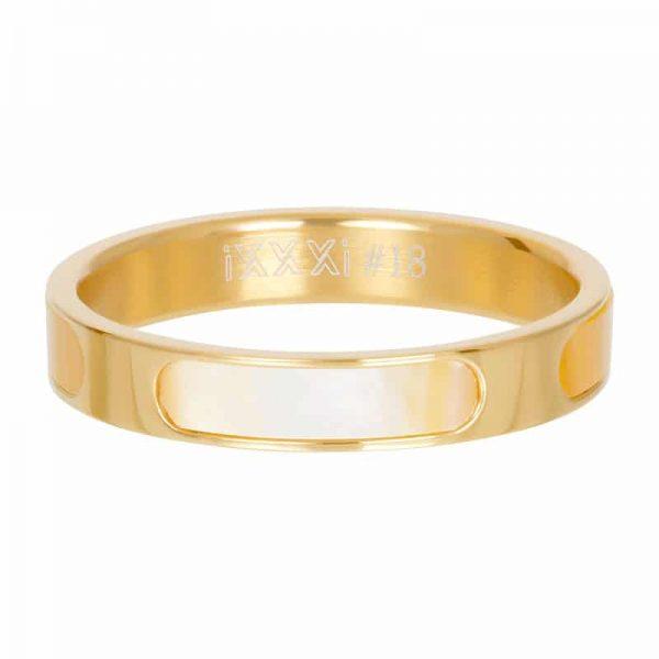 Aruba gold 4mm vulring goud - iXXXi