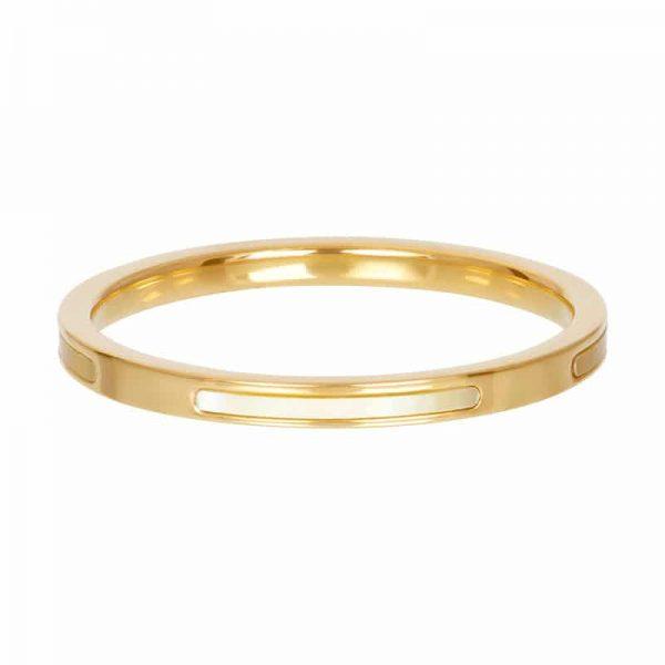 Bonaire 2mm vulring goud - iXXXi