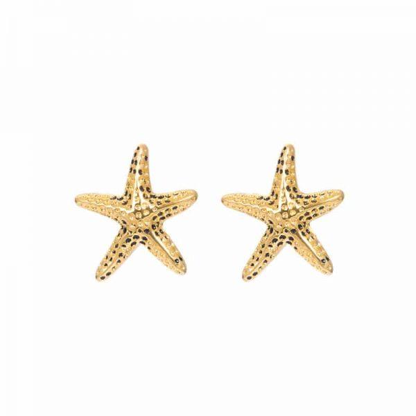 Sea star oorbellen goud - iXXXi