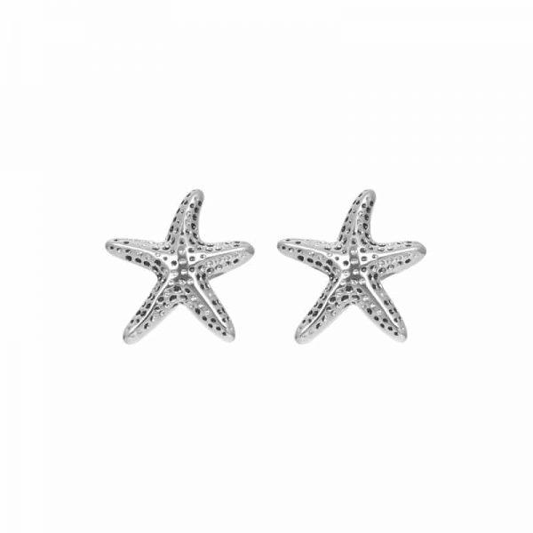 Sea star oorbellen zilver - iXXXi