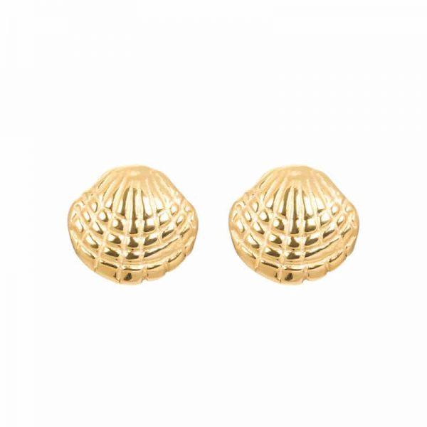 Shell oorbellen goud - iXXXi