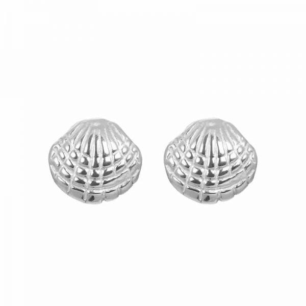 Shell oorbellen zilver - iXXXi