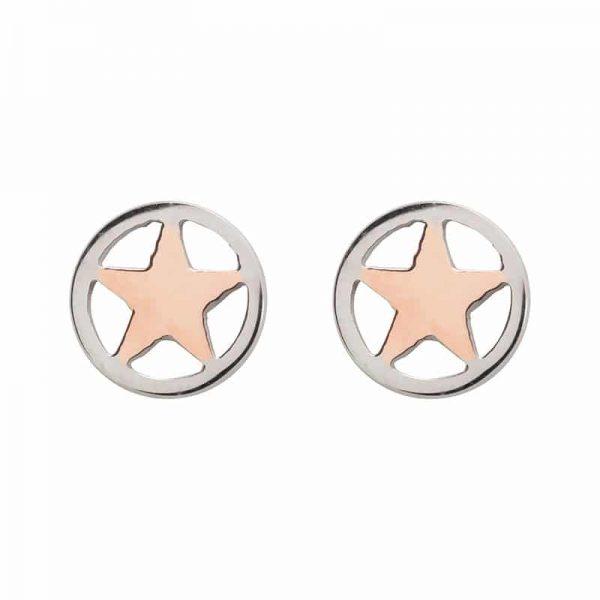 Star oorbellen rosé - iXXXi
